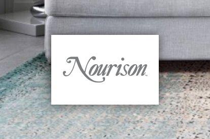 Nourison | Bassett Carpets